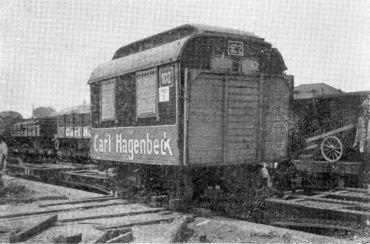 Hagenbeck Circus